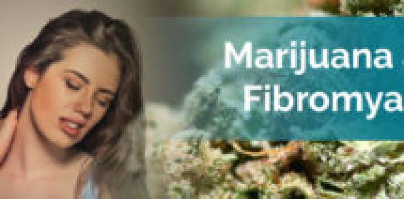 Marijuana And Fibromyalgia